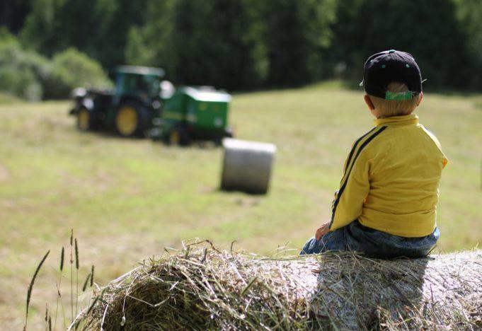 Pieni poika istuu maatilalla heinäpaalin päällä ja katselee peltotöissä olevaa vihreää traktoria.