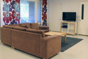 Vihnukselan olohuone. Ruskea kulmasohva, unikkoverhot ja tv.