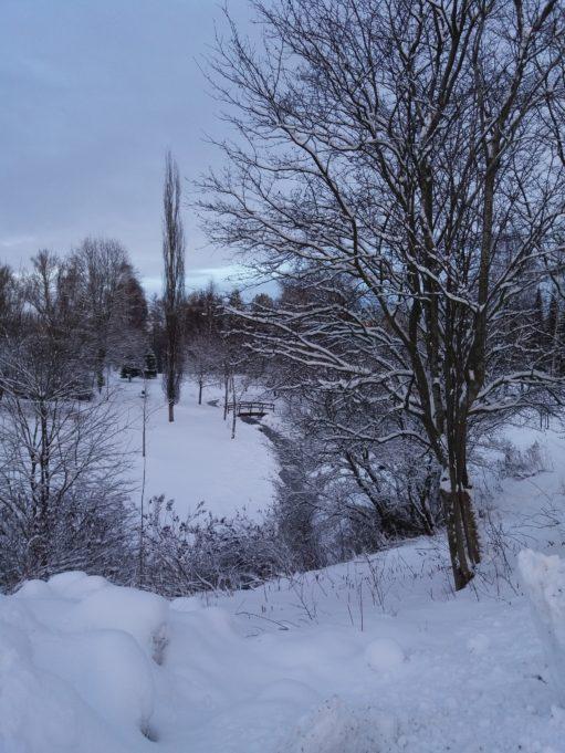 Talvinen poutunpuisto