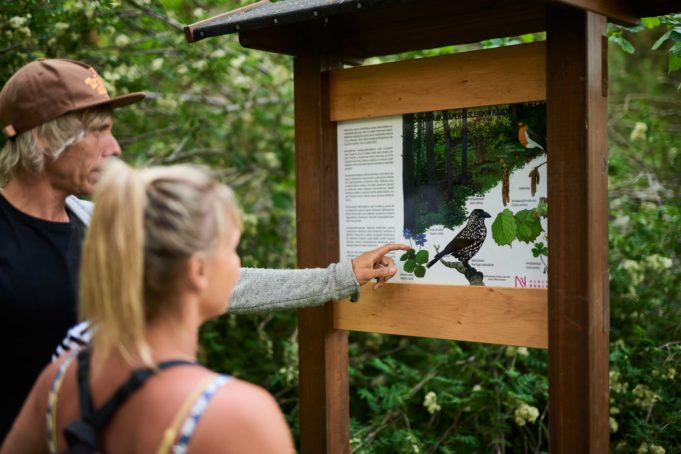 Isä, äiti ja pieni poika tutkivat luonto-opastetta Hakavuoren luontopolulla.