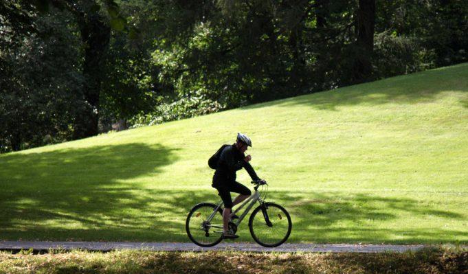 Mies pyöräilee maastopyörällä hiekkatiellä vehreässä puistossa.